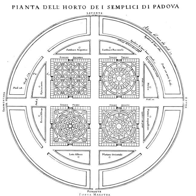L_Horto_de_i_semplici_di_Padoua_1591_plan